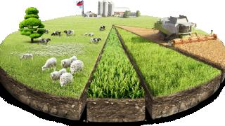 Eylül Ayı Tarım Ürünleri Üretici Fiyat Endeksi Açıklandı